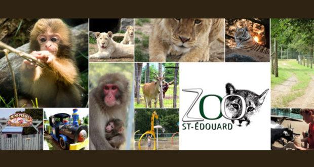 Journée en famille au Zoo St-Édouard
