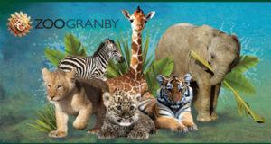 Laissez-passer pour 4 personnes pour visiter le Zoo de Granby
