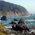 Voyage pour deux personnes à Redwood Coast en Californie
