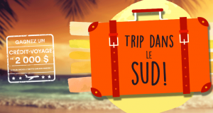 Gagnez un crédit-voyage de 2 000 $ grâce à Voyages Michel Barrette