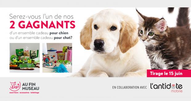 Un ensemble cadeau pour votre chien ou votre chat