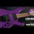 Une guitare électrique (3999$)