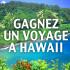 Gagnez un voyage à Hawaii pour 4 personnes