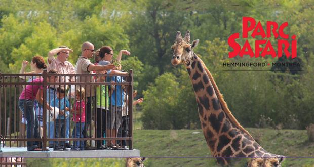 Gagnez 4 billets pour visiter les fabuleux animaux du Parc Safari