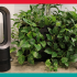 Gagnez un radiateur et ventilateur Dyson de Canadian Tire