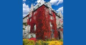 Un séjour musical pour deux cet automne en Charlevoix