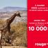 Gagnez un Voyage en Afrique du Sud (Valeur de 10 000$)