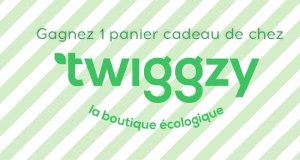 Panier cadeau boutique écologique Twiggzy (Valeur de 507$)