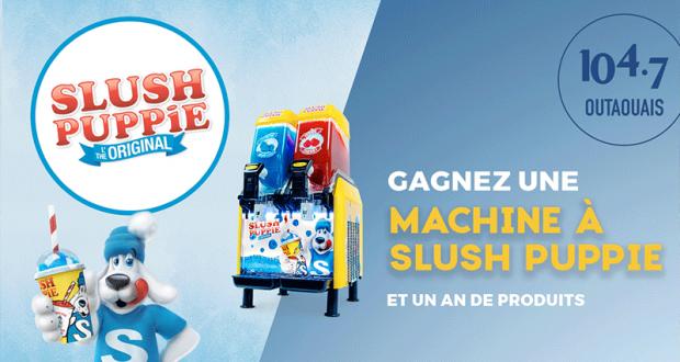 Une machine à Slush Puppie 2 saveurs et 1 an de produits