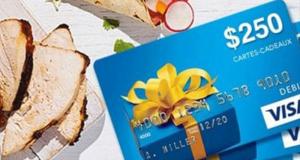 40 cartes prépayées Visa de 250$