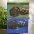 2 volants Logitech pour PlayStation4 - PC- XBOX